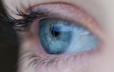 Auge.jpg
