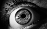 Auge_Aline Berry auf Pixabay.jpg