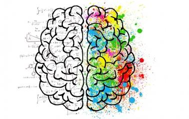 Gehirn_Logik_und_Kreativitaet.jpg