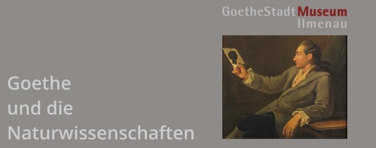 270. Goethe Geburtstag Groß