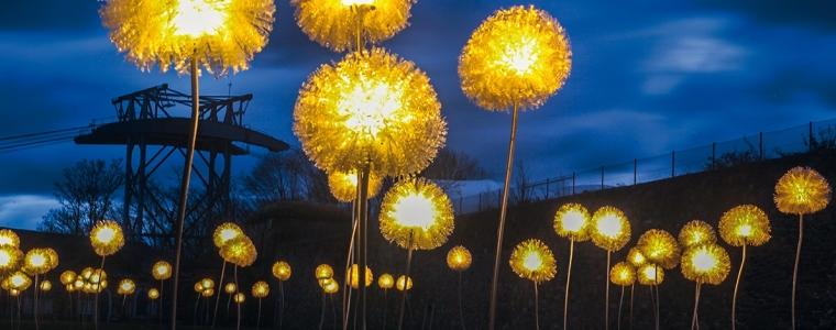 essen light festival.jpg